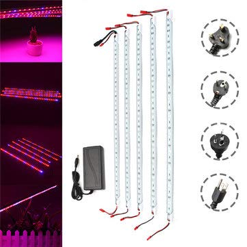 Commercial Greenhouse Led Grow Lights in US - 4