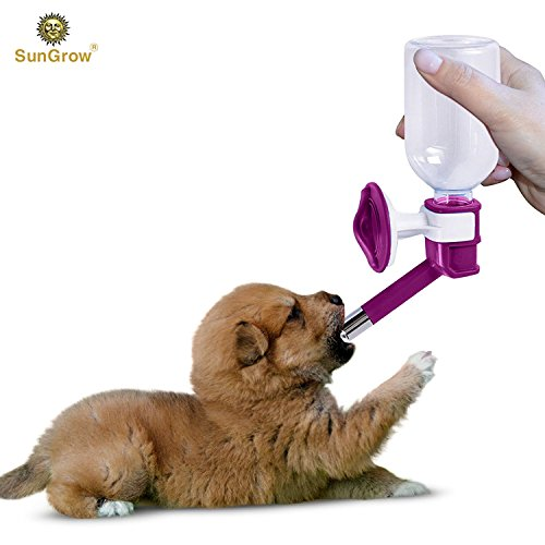 SunGrow Pretty Purple Pet Water Dispenser Bottle BPA Free, Rust Proof, Leak Proof - Dripless Stainless Steel Pipe - Keep Puppies, Cats, Bunnies Other Small Animals hydrated: Easy to Install