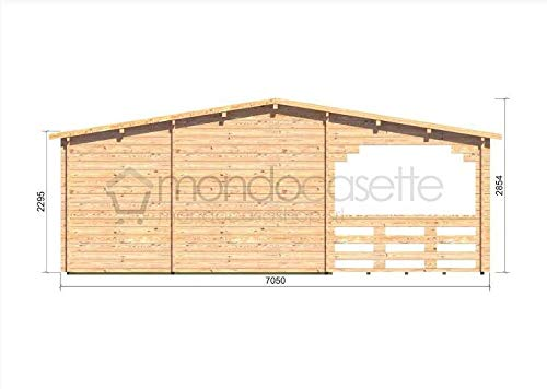 Mondocasette casa caseta de Madera de jardín - Modelo Alma Grosor Paredes 45 mm, 36mq + M2 de Jardin de Invierno, Bungalow Chalet Madera: Amazon.es: Jardín