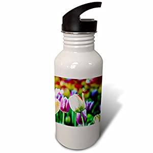 3dRose Alexis Photography - Flowers Tulip - Creme tulip flower, green, purple and red background - Flip Straw 21oz Water Bottle (wb_273931_2)