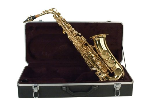 Palatino WI-819-A B Flat Alto Saxophone with Case from Palatino