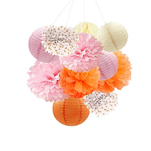 NICROLANDEE Orange Party Hanging Decorations Paper Lanterns Tissue Paper Pom-Poms Round Honeycomb Ball for Ceiling Hangings Wedding Bridal Shower Birthday Baby Shower Party Decor (Orange Color)]()