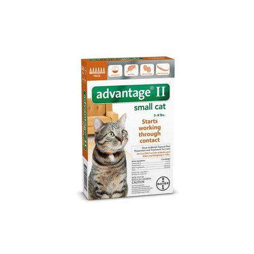 Pet Bayer Advantage II Flea Control for Cats (5 to 9-Pound/6Month). Treatment, Kills, Prevent Supply Store/Shop