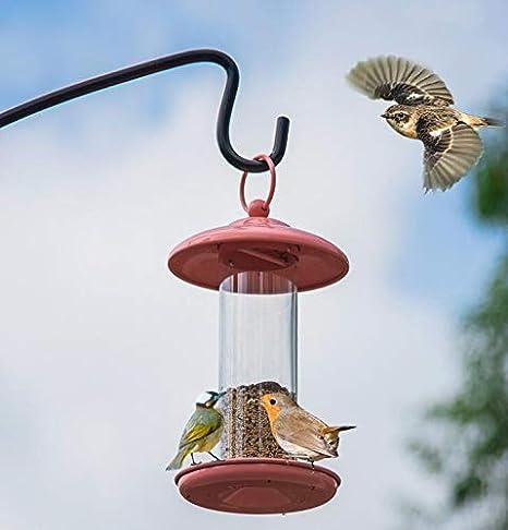 NTS Jaula de alimentación de Tambor Transparente para Aves/Loros ...