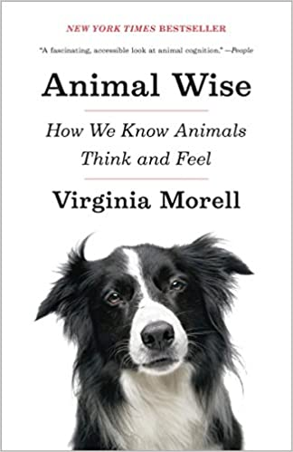 Animal wise how we know animals think and feel 1st virginia morell animal wise how we know animals think and feel 1st virginia morell amazon fandeluxe Choice Image
