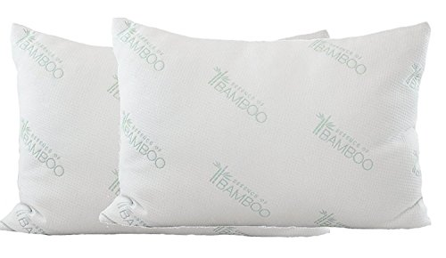 Ultimate Essence Of Bamboo Pillow - Poly Fiber with Premium Bamboo Derived Rayon / Poly Cover-Queen 2-Pack Filled in the USA - Hypoallergenic Pillow-Best Pillow for Stomach, Back, and Side Sleepers