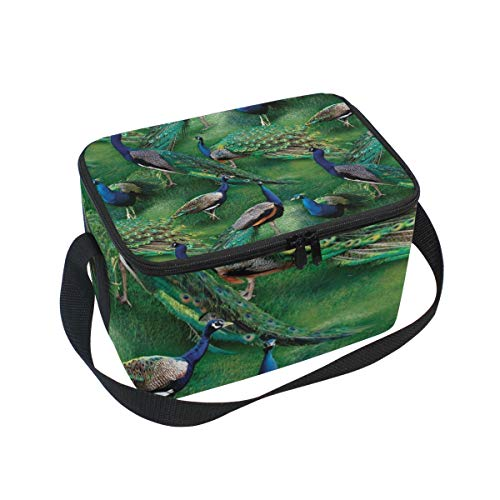 Lunch Tote WILD WINGS PAGENT OF COLOR SCENIC PEACOCK Mens Insulated Lunch Bag Zipper Kids Lunch Box
