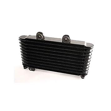 SUZUKI GSF BANDIT 600-650-95/06--Radiador de aceite de nuevo 960009: Amazon.es: Coche y moto