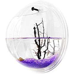Wilgirl Home Decoration Pot Wall Hanging Mount Bubble Aquarium Bowl Fish Tank (XL)