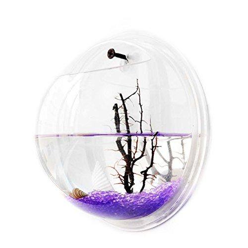 Wilgirl Home Decoration Pot Wall Hanging Mount Bubble Aquarium Bowl Fish Tank (XL)