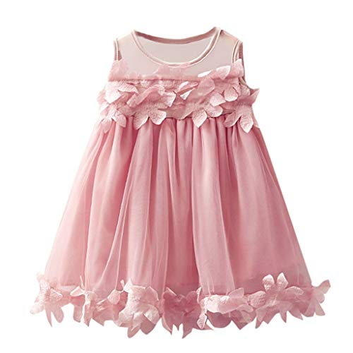 Doublelift Toddler Baby Girl Clothes Flower Lace Tutu Dress Sleeveless Party Dresses ()