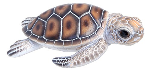 natures-gallery-65-x-25-x-5-resin-baby-sea-turtle