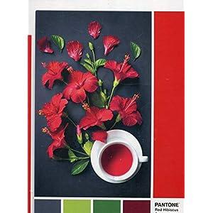 Clementoni Pantone Puzzle Goji Berry 1000 Pezzi Multicolore 39494