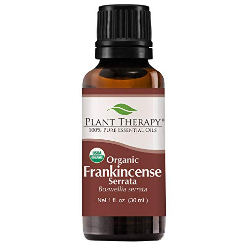 Plant Therapy Frankincense Serrata Organic Essential Oil | 100% Pure, USDA Certified Organic, Undiluted, Natural Aromatherapy, Therapeutic Grade | 30 Milliliter (1 Ounce)