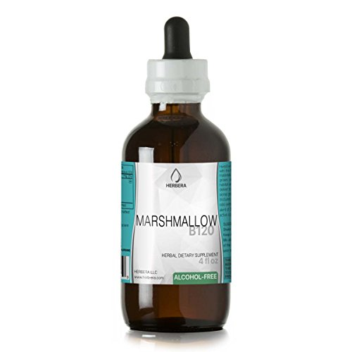 Marshmallow B120 Alcohol-Free Herbal Extract Tincture, Super-Concentrated Organic Marshmallow (Althaea Officinalis) (4 fl oz)