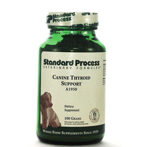 Norme Soutien de la thyroïde processus Canine, 100 g