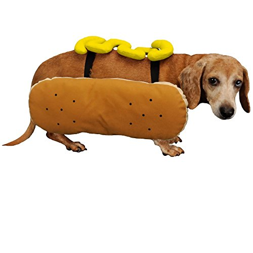 Otis and Claude Fetching Fashion Hot Diggity Dog Costume Mustard SMALL