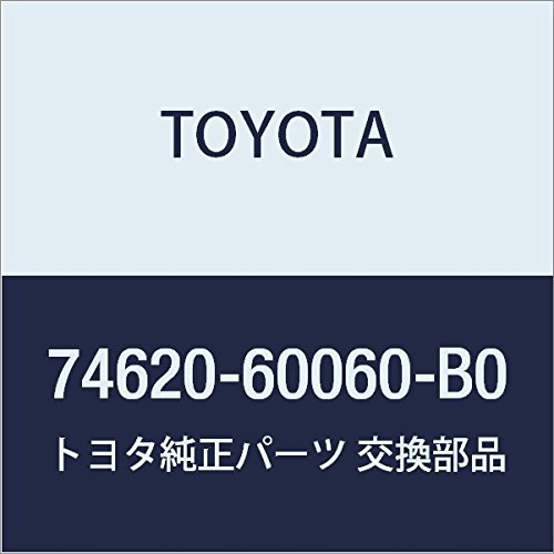 Toyota 74620-60060-B0 Assist Grip Assembly