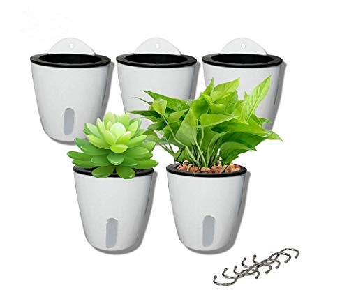5 Pack Visible Water Level Lazy Flower pots Water Plants Pots Self Watering Planter Hanging Planters,Succulent Plants and Small Flower pots Indoor Out Flowerpot with 5 Metal Hooks (White)