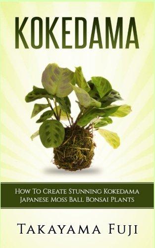 Kokedama: How To Create Stunning Kokedama Japanese Moss Ball Bonsai Plants (Best Plants For Kokedama)