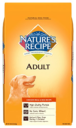 Nature'S Recipe Adult Dog Food Dry, Chicken Meal & Rice Recipe, 30-Pound