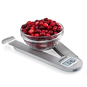 Gourmia GKS9165 Stainless Steel Folding Scale Compact Electronic Kitchen Scale With Hanger Hook & Tare Function