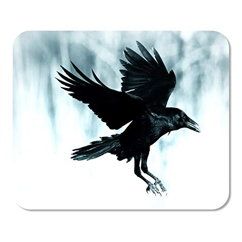 Suike Mousepad Computer Notepad Office Black Raven Flying in Moonlight Scary Creepy Gothic Setting Cloudy Night Halloween Home School Game Player Computer Worker 9.5x7.9 Inch ()