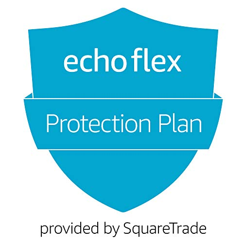 1-Year Protection Plan plus Accident Protection for Echo Flex (2019 release, delivered via e-mail)
