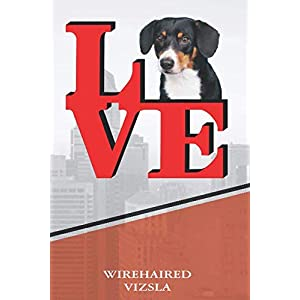 "Wirehaired Vizsla: Love Park Recipe blank cookbook Notebook book is 120 pages 6""x9"" 18"