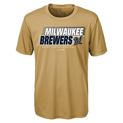 (MLB Youth Boys 8-20 Brewers Short sleeve Alternate Color performance Tee, S(8), Heather Grey)