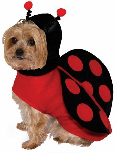 Forum Novelties Kid's Pet Dog Cute Dress Up Halloween Costume Lady Bug Red Black Childrens Costume, Multi, Small]()