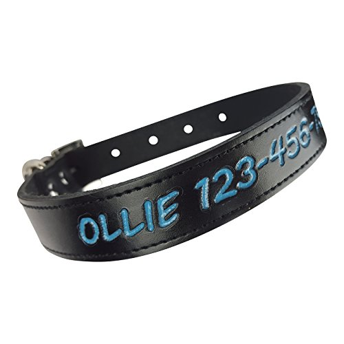 Personalized Dog Collar - Custom Leather with 4 Bold Text Styles and 8 Text Colors, Large (18-22 Inch Neck) Black (Style Leather Dog Collar)