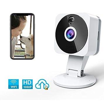 NIYPS - Cámara Wi-Fi Interior 1080P, Full HD inalámbrica ...