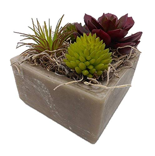 Used, Habersham Candle Co. Sand Storm Succulent GEO Cube for sale  Delivered anywhere in USA