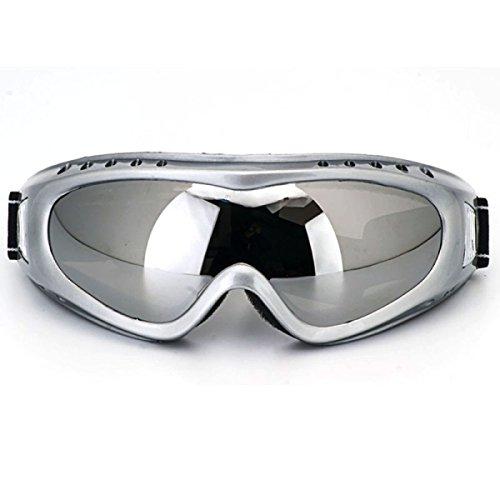 WDAKOWA Outdoor-Reiten Ski-Spiegel Bergsteigen Wind Und Anti-Beschlag Staub Und Staub Schutzbrillen,B