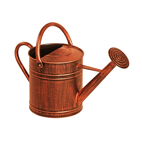 84872 watering can