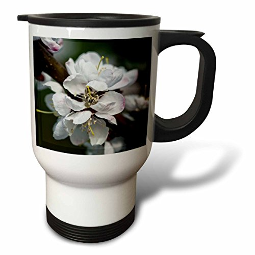 3dRose Alexis Photography - Flowers Sakura Beautiful - Japanese apricot sakura flowers, low key cold colors - 14oz Stainless Steel Travel Mug (tm_286531_1) by 3dRose