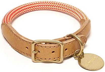 HOWLPOT. Collar de Perro Ajustado Fabricado con Piel de Buttero y Cuerda de Escalada