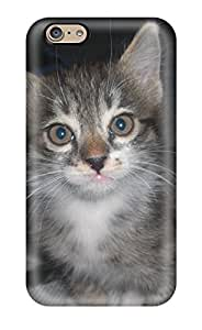 New Premium CarolAnnMoore Persian Cats Skin Case Cover Excellent Fitted For Iphone 6