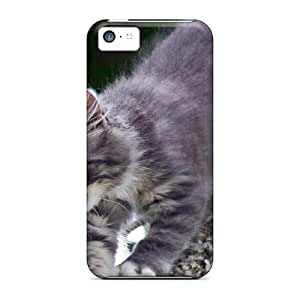 Ultra Slim Fit Hard AlikonAdama Cases Covers Specially Made For Iphone 5c- Kitten In Tree