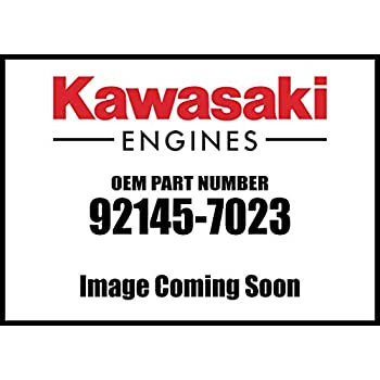 Amazon.com: Kawasaki 59231-2099 Motor Fj180v Relleno nuevo ...