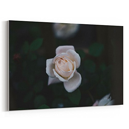 Westlake Art - Rose Flower - 16x24 Canvas Print Wall Art - Canvas Stretched Gallery Wrap Modern Picture Photography Artwork - Ready to Hang 16x24 Inch (Grow Sunflower Bucket)