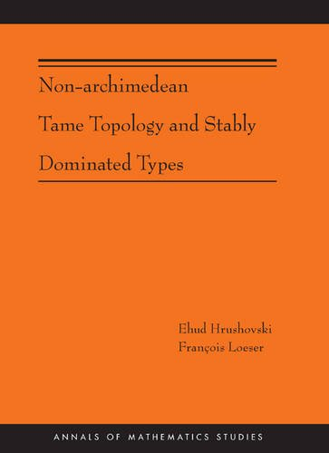 Non-Archimedean Tame Topology and Stably Dominated Types (AM-192) (Annals of Mathematics Studies)