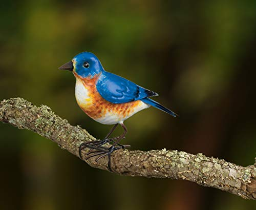 Wonders-Shop-USA Metal Songbird Bird Indoor/Outdoor Decor for Garden Bluebird