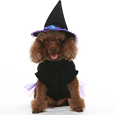 EXPAWLORER Dog Halloween Costume, Comfortable Fancy Witch Costume for Party Activity HAOBO HD006-03