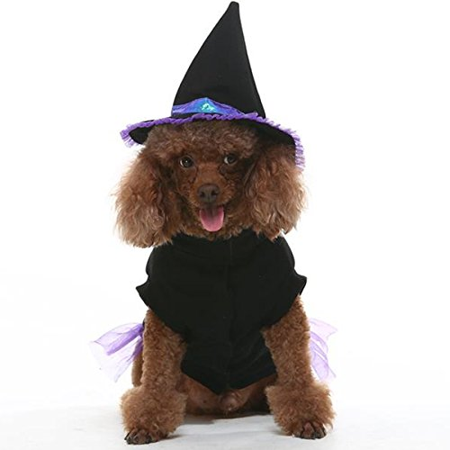 Any Witch Costumes (EXPAWLORER Dog Halloween Costume, Comfortable Fancy Witch Costume for Party Activity)