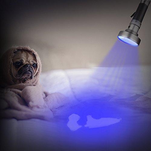 100LED UV Lampe de Torche Ultra Violet WOLFWILL Blacklight Flashlight Détecteur pour Urine&Tache, Lumière Noire / Lampe de Poche, Pour Trouver les Taches sur les Vêtements, Moquettes ou Tapis