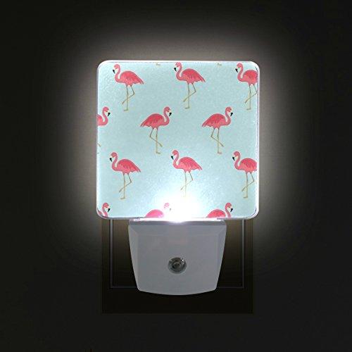 GIOVANIOR Pink Flamingo Plug in Dusk to Dawn Light Sensor LED Night Light Wall Light for Bedroom, Bathroom, Hallway, Stairs, Energy Efficient