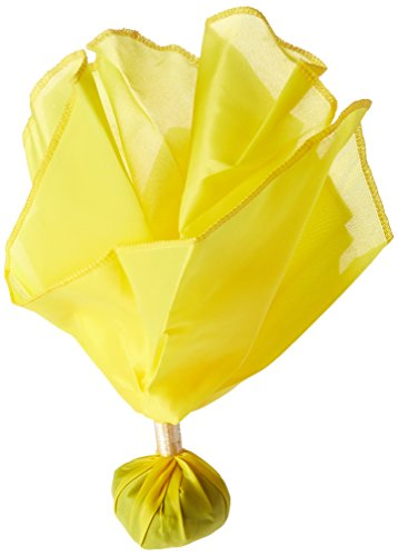 BSN Official's Penalty Flag