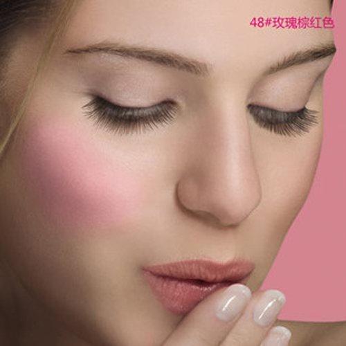 Blush -# 48 Cendre De Rose Brune Bourjois Blush Women 0.08 oz (Pack of 5)